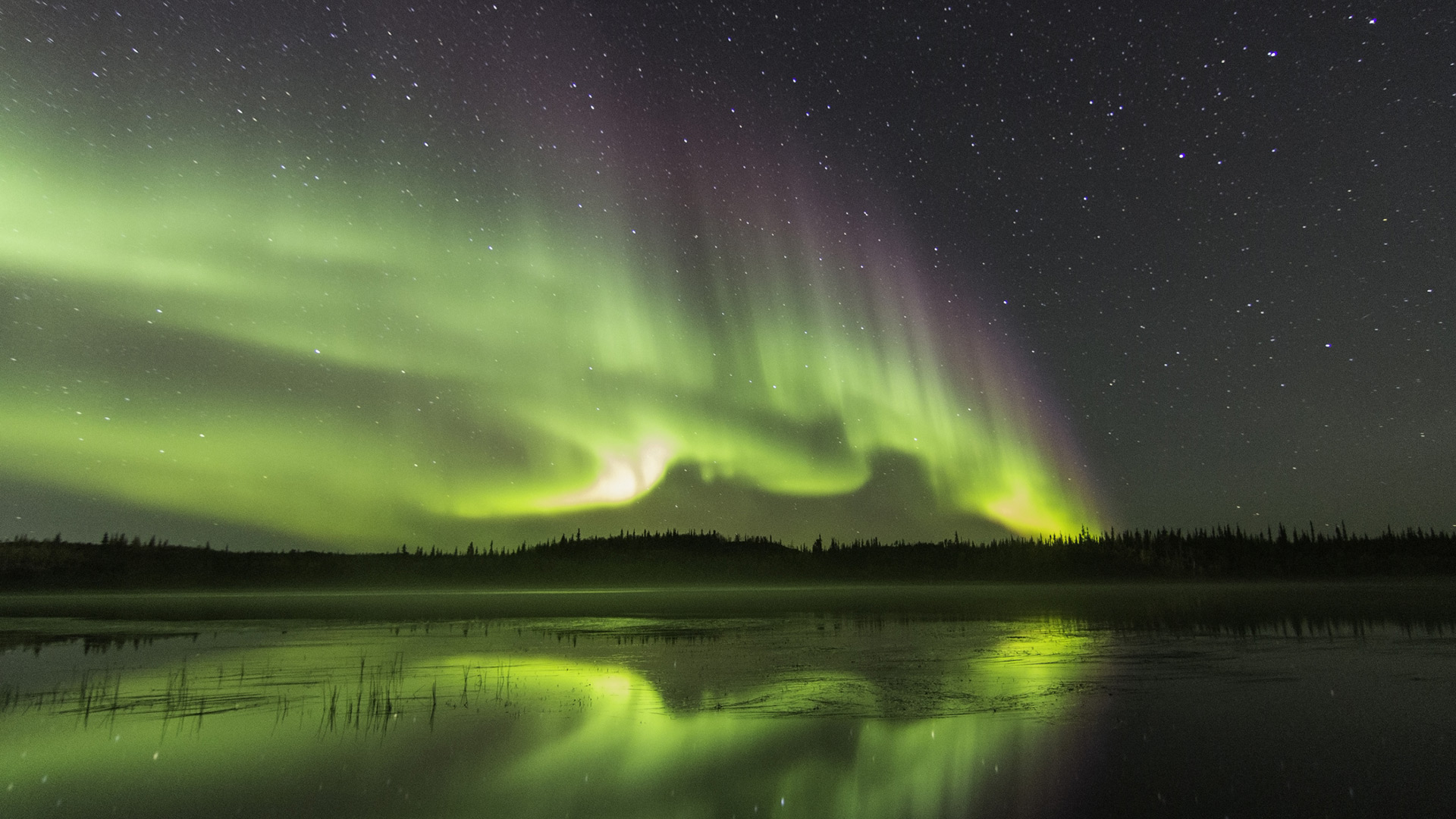 Northern Lights, Canada | Sheknows.ca