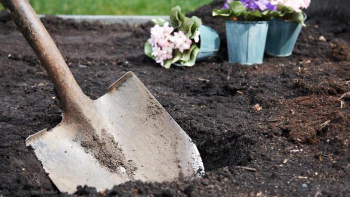 Planting Zones
