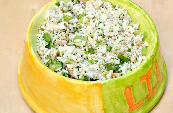 Homemade healthy dog food recipe