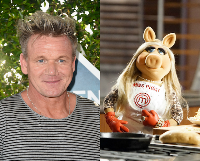 Gordon Ramsay's has been with a lot of people: Miss Piggy