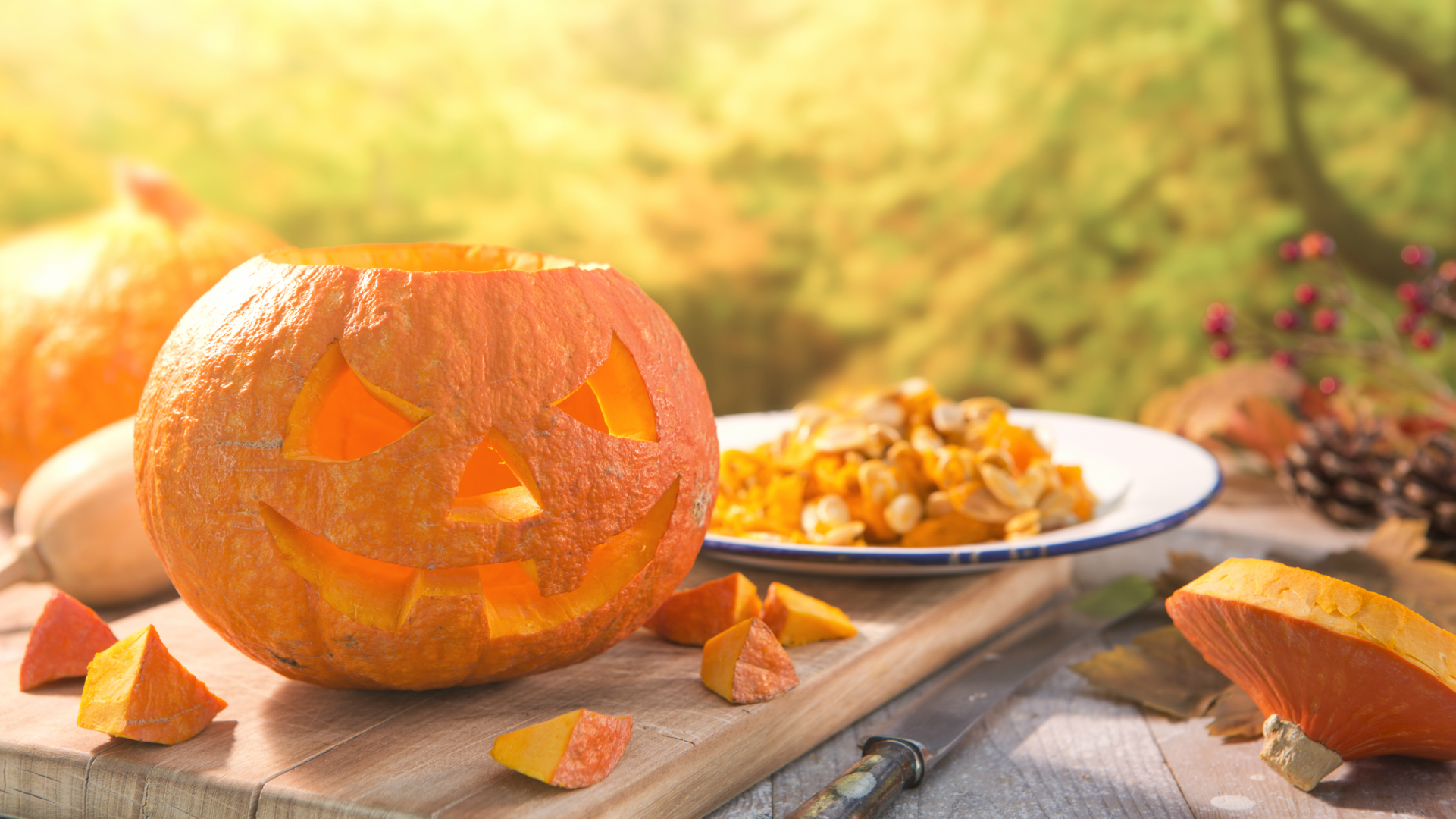 These websites offer amazing pumpkin carving patterns that cost