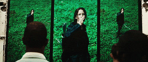 'Hunger Games' GIF