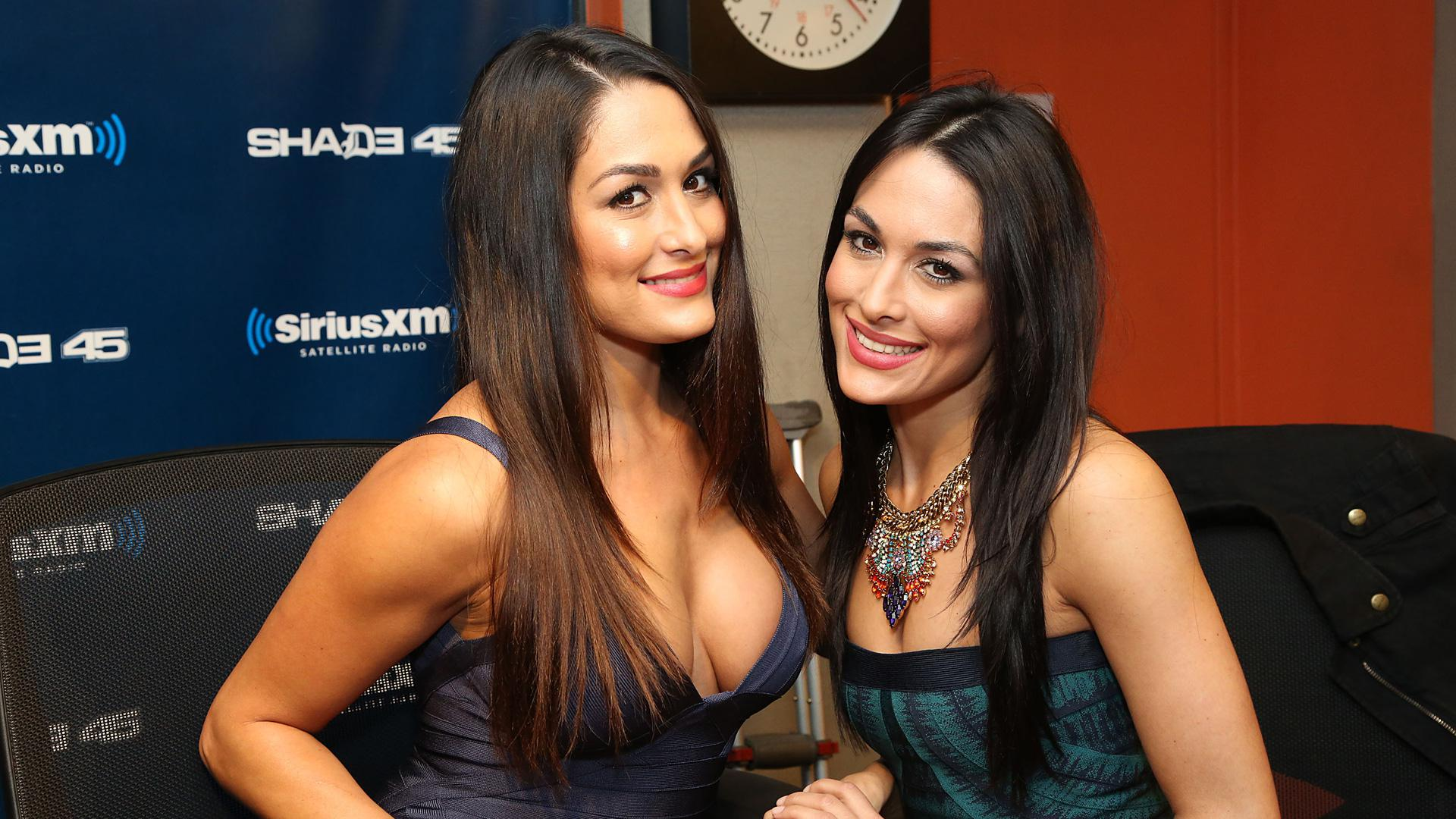Is a cute The Bella Twins naked (15 photo), Sexy, Hot, Selfie, butt 2019
