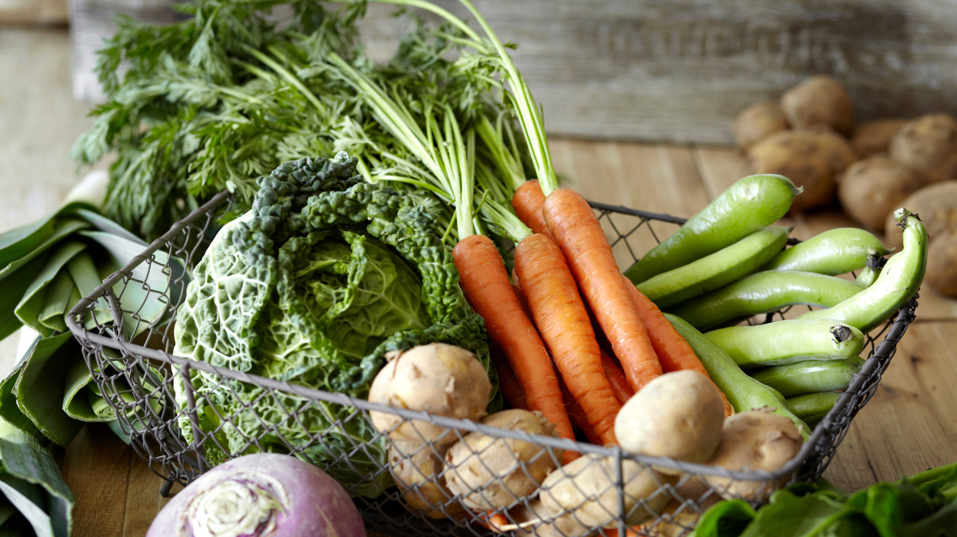 9 Easy Vegetables To Grow Indoors Kale Carrots More Sheknows,What A Beautiful Name Piano Sheet Music Easy