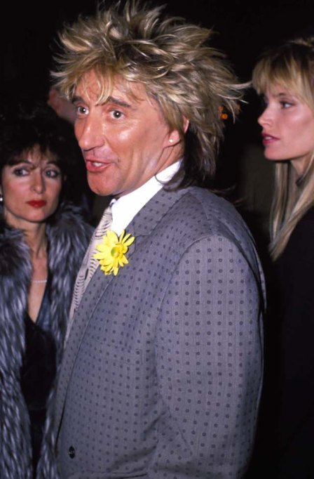 Check out Rod Stewart's hairstyle evolution: