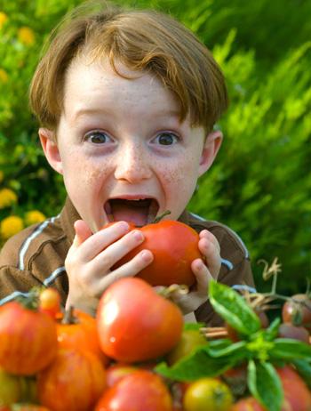 Boy Eating Tomato