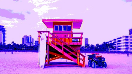 Where to Go in Miami With