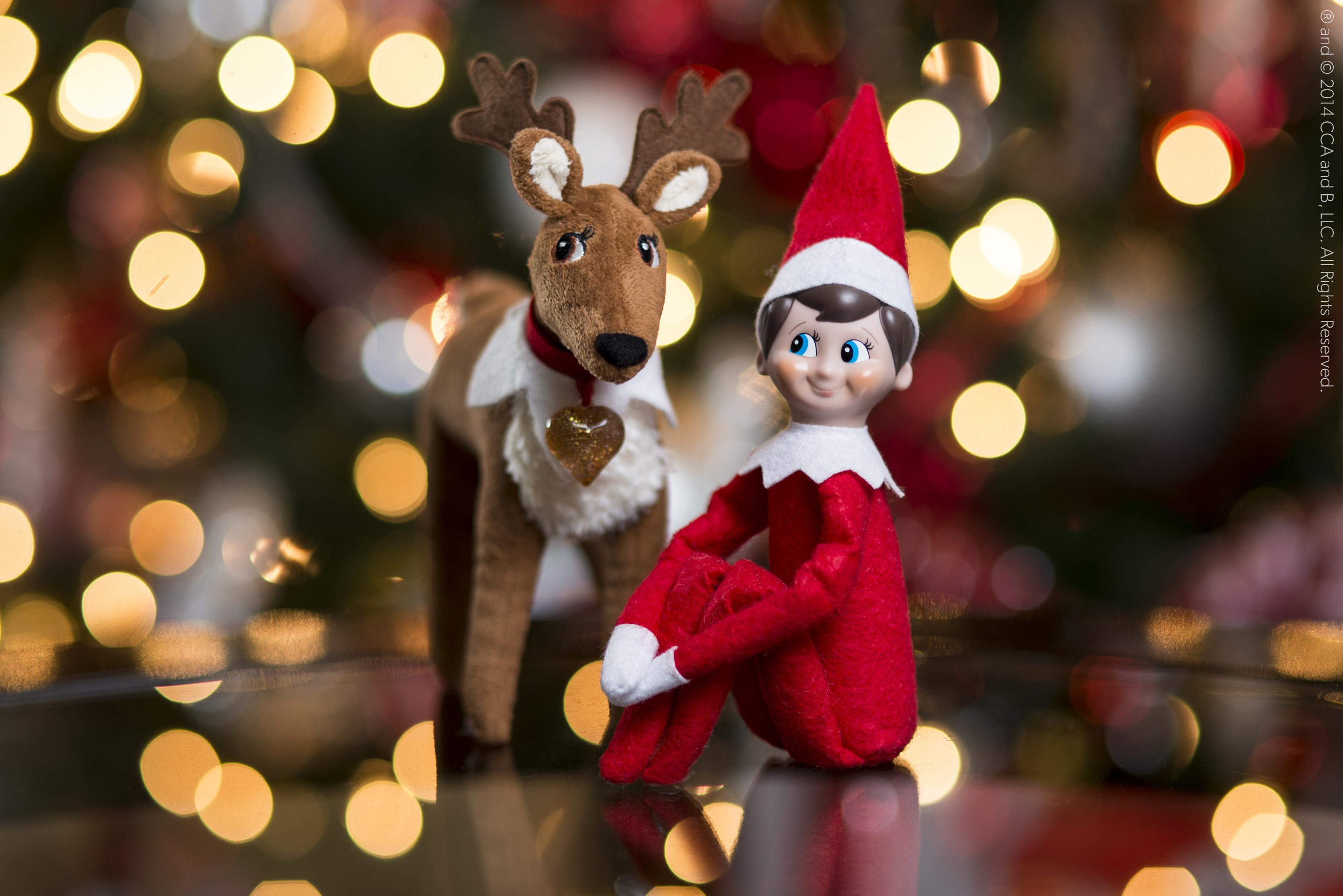 12 Fun facts about Elf on the Shelf you never knew before – SheKnows