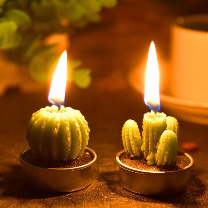 Succulent Cactus Candles