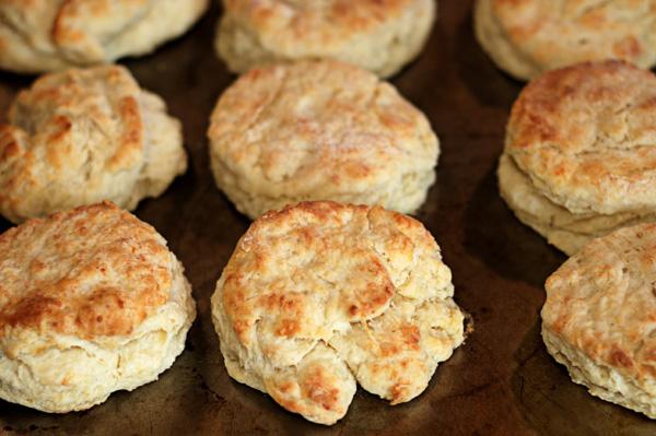 Paremesan biscuits