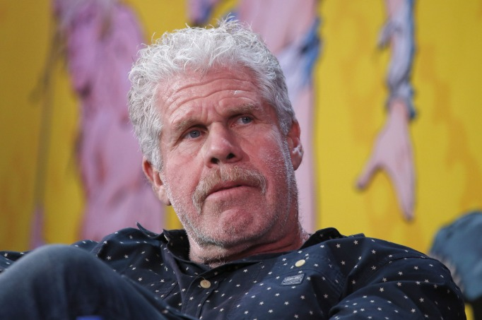 Celebrities who might run for office: Ron Perlman