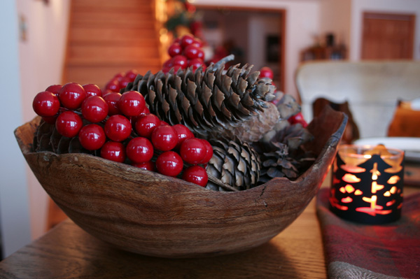 Pinecone and cranberry Christmas display