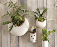 West Elm ~ Shane Powers Ceramic Wall Planters ~ Pierced Tube Planter