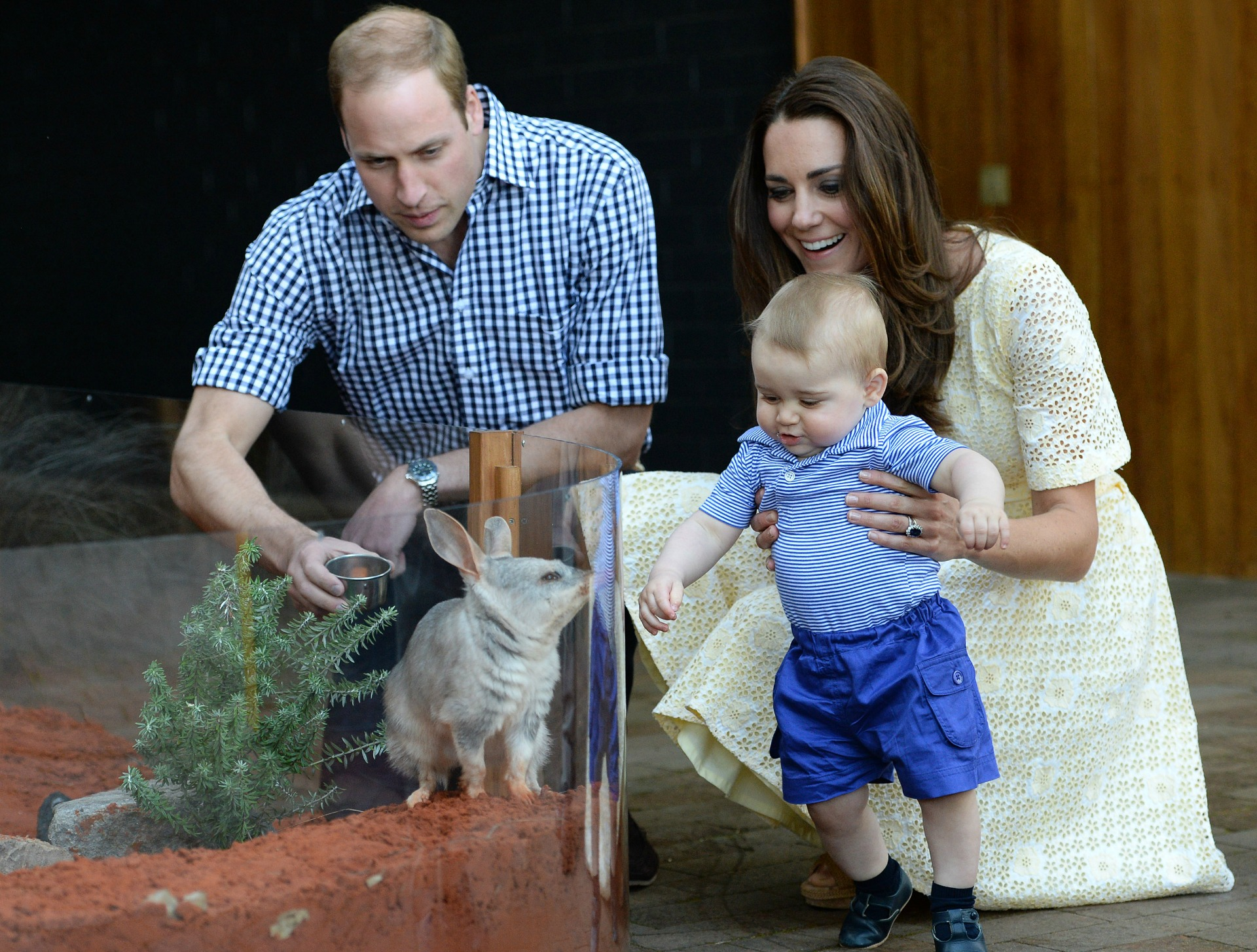 Prince George zoo