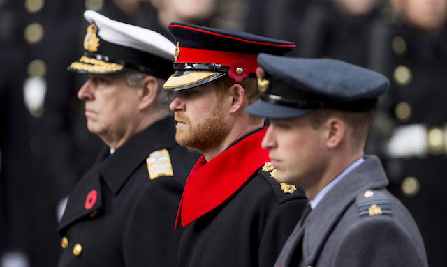 Prince Harry British Army Remembrance Day