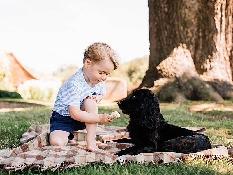 Prince George gives ice cream to his dog, Lupo.