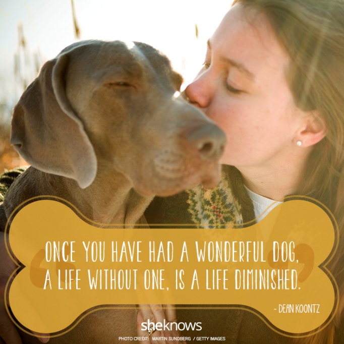 """""""Once you have had a wonderful dog, a life without one, is a life diminished.""""? —Dean Koontz"""