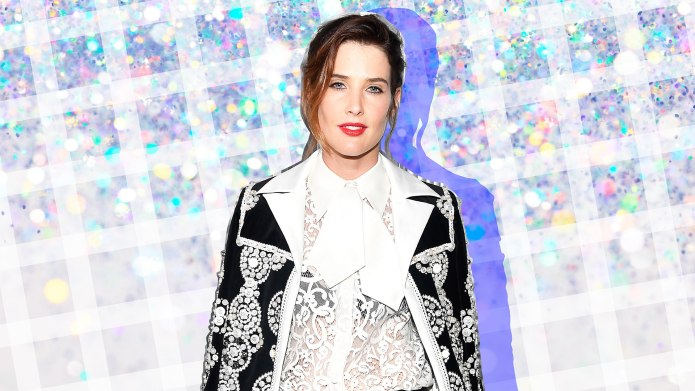 Cobie Smulders on Sacrificing Ambition to