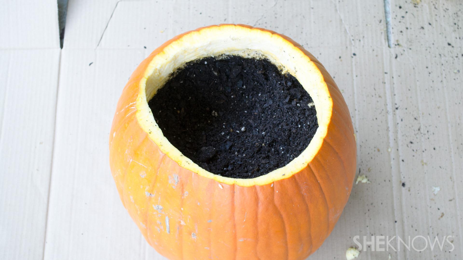 DIY Pumpkin planter: Fill with soil