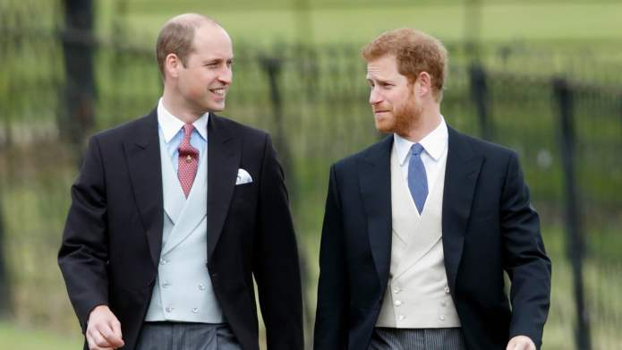 Princes William & Harry Almost Received