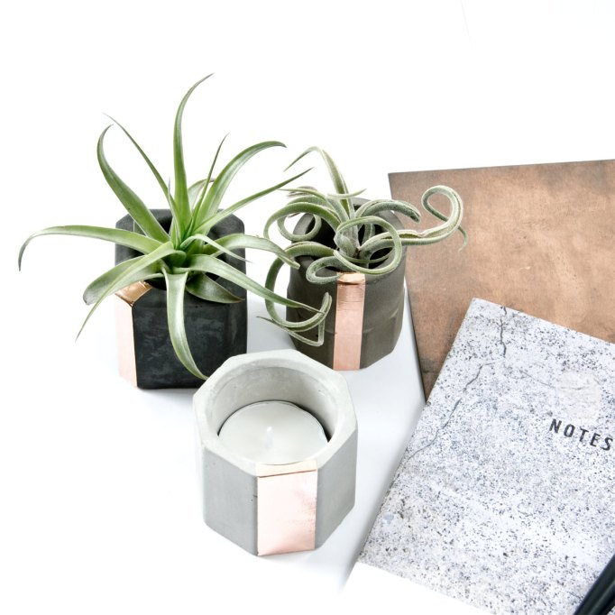 Affordable Etsy Shops: Get your green thumb on when you shop at this store