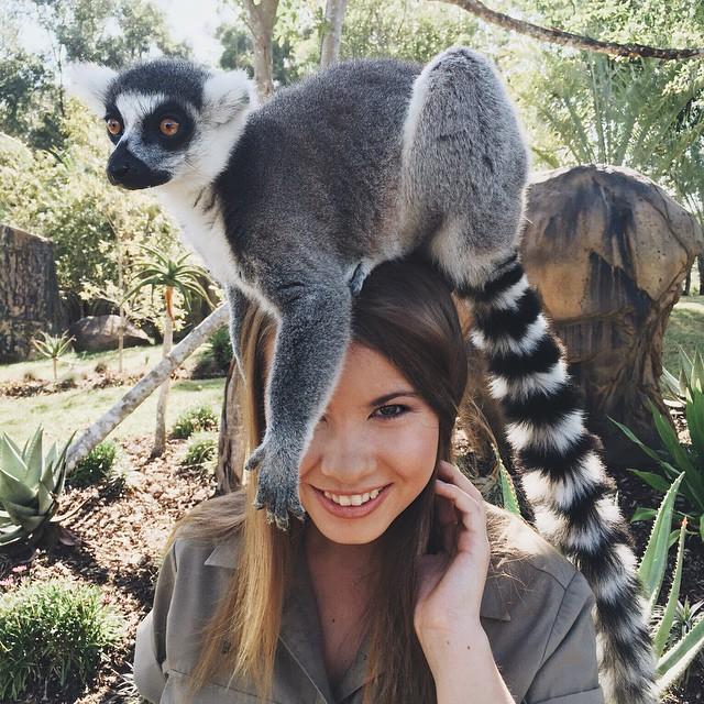 bindi-irwin-lemur