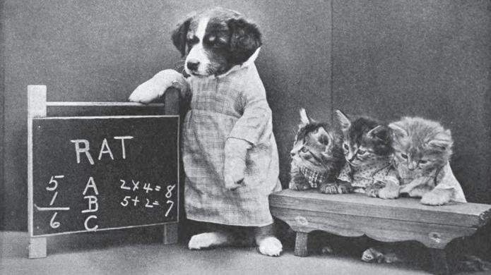 Adorable images from 1915 prove we