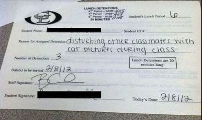 Hilarious detention slips