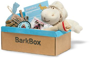 Top subscription boxes for dogs