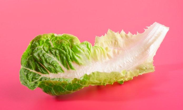 Salad Lovers, Rejoice! Romaine Lettuce Is