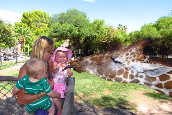 Reid Park Zoo, Tucson