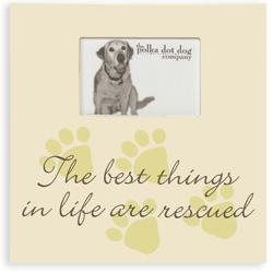 Rescued Dog Frame