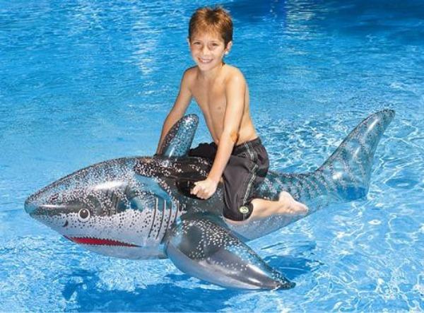 Ride-on shark