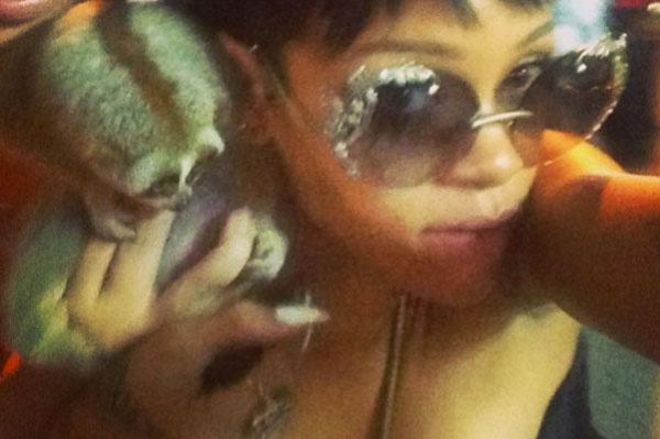 Rihanna with slow loris