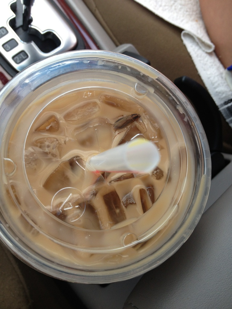 gross pictures of alleged McDonald's food 4
