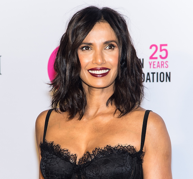 Celebs Tell Us What They're Getting Their Kids for the Holidays: Padma Lakshmi