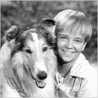 TV's most famous pets