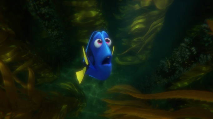 Dory is most popular fish