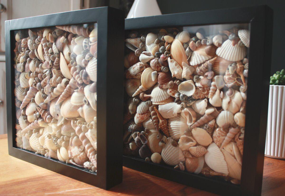 Seashell shadow box | Sheknows.com