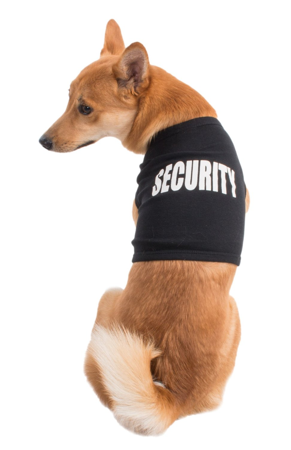 security shirt for dogs