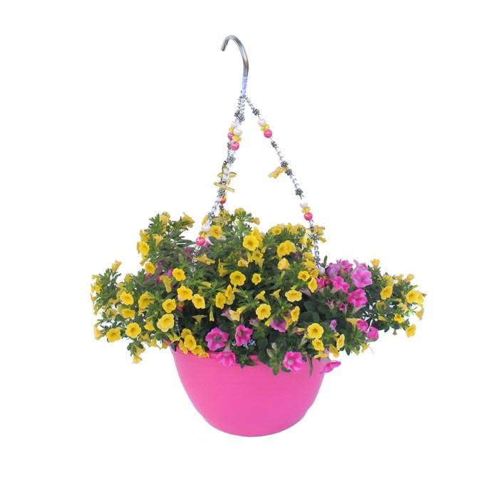 1.5-Gallon Planter Mixed Annuals Combinations