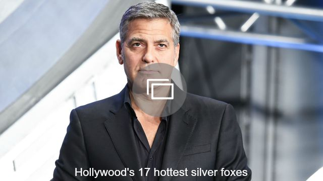 silver foxes slideshow