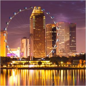 Singapore ferris wheel at night