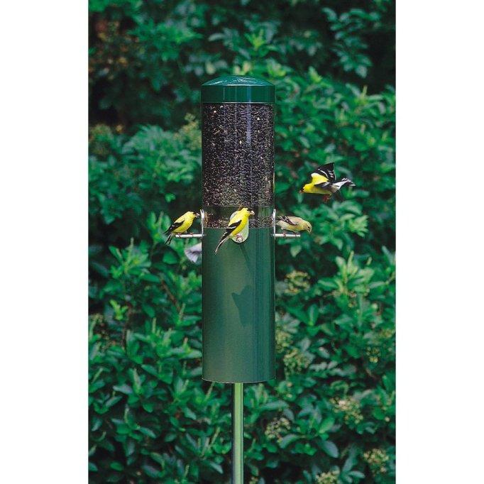 Birds Choice Steel Squirrel-Resistant Bird Feeder