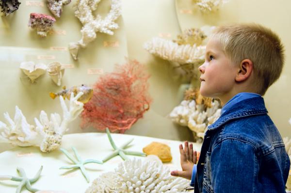 preschooler at museum