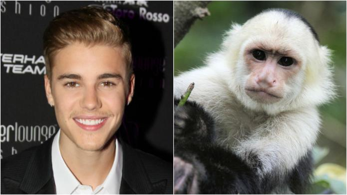 7 Celebrities with surprisingly exotic pets