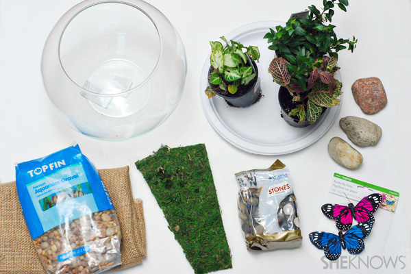 What you'll need for terrarium