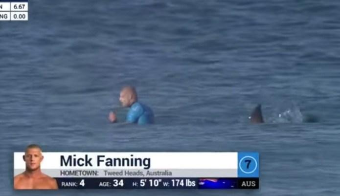 Pro surfer survives shark attack, may