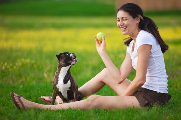 5 Secrets of happy pets