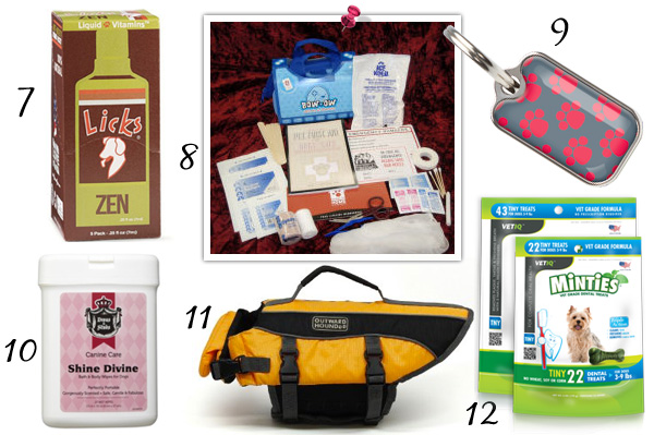 Dog travel must-haves